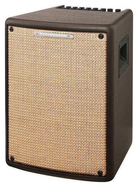 T80II Acoustic Combo Ibanez
